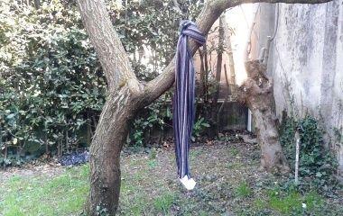 albero_sciarpa